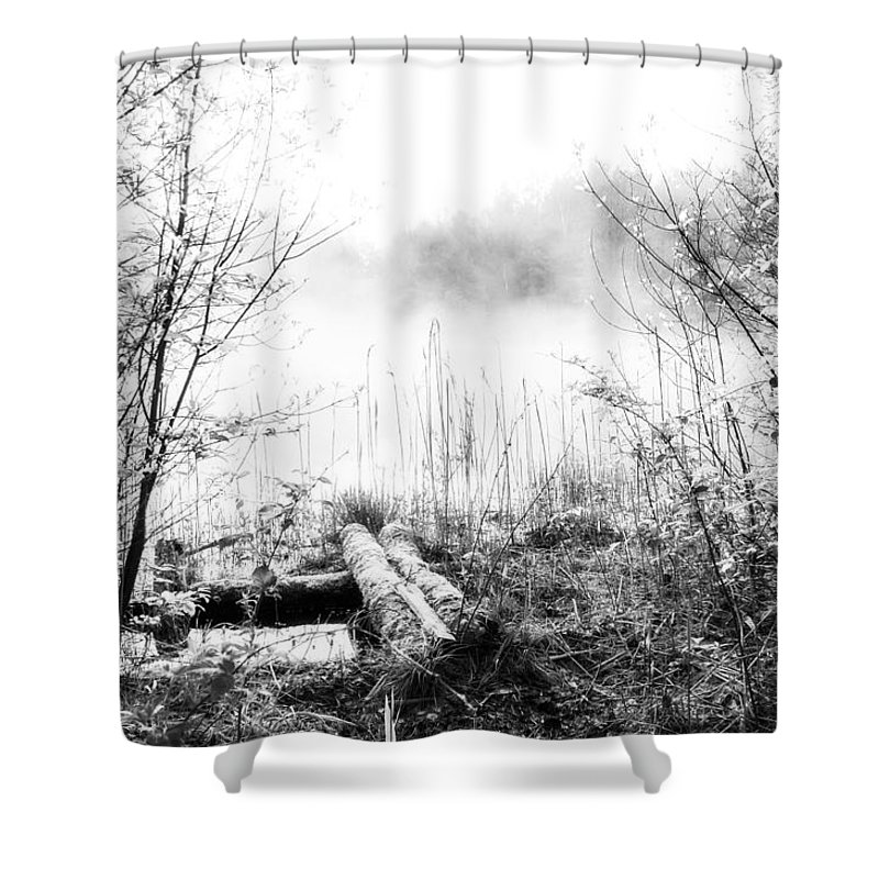 Ice Fog Shower Curtain featuring the photograph Natural Ice Fog by Yevgeni Kacnelson