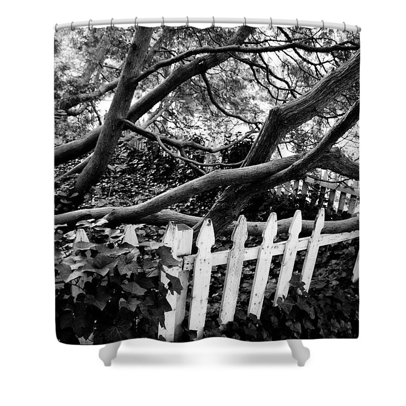 Picket Shower Curtain featuring the photograph Overflowing A Picket Fence by Cora Wandel