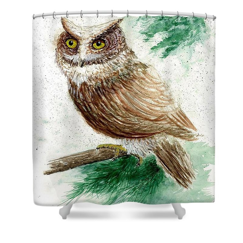 Owl Shower Curtain featuring the painting Owl Study by Steven Schultz