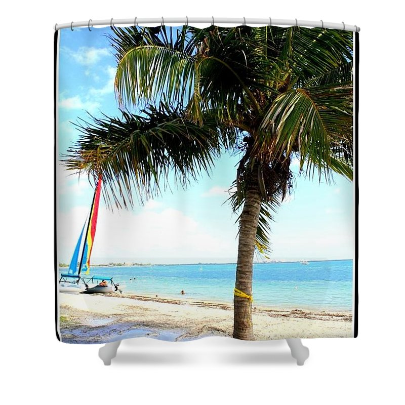 Palm Tree And Sailboat - Florida - Palm Trees - Landscapes - Nature - Seaescapes Shower Curtain featuring the photograph Palm Tree And Sailboat by Dora Sofia Caputo Photographic Design and Fine Art
