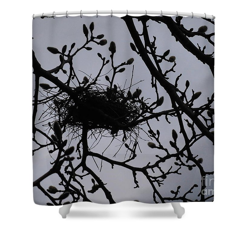 Magnolia Shower Curtain featuring the photograph Put A Bird In It I I by Rowena Throckmorton