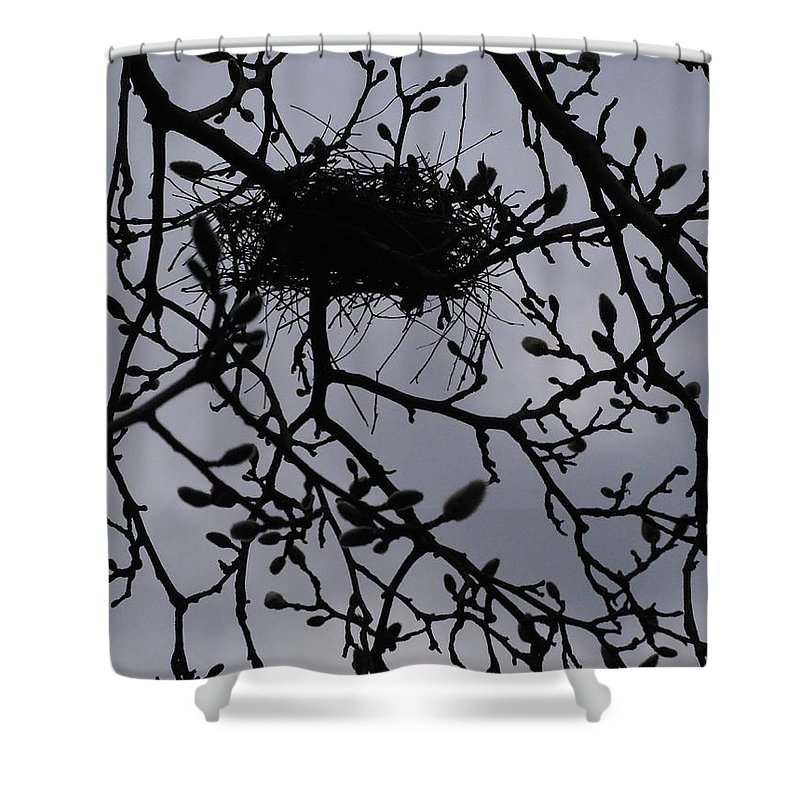 Magnolia Shower Curtain featuring the photograph Put A Bird In It I by Rowena Throckmorton