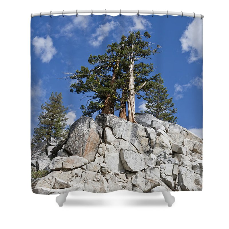 California Shower Curtain featuring the photograph Reaching Toward The Sky by F Innes - Finesse Fine Art