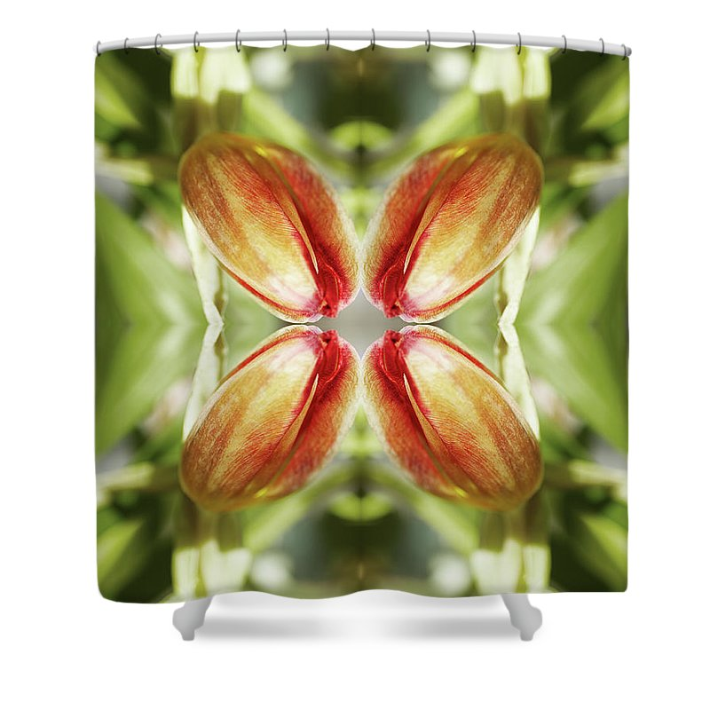 Tranquility Shower Curtain featuring the photograph Red Tulip by Silvia Otte