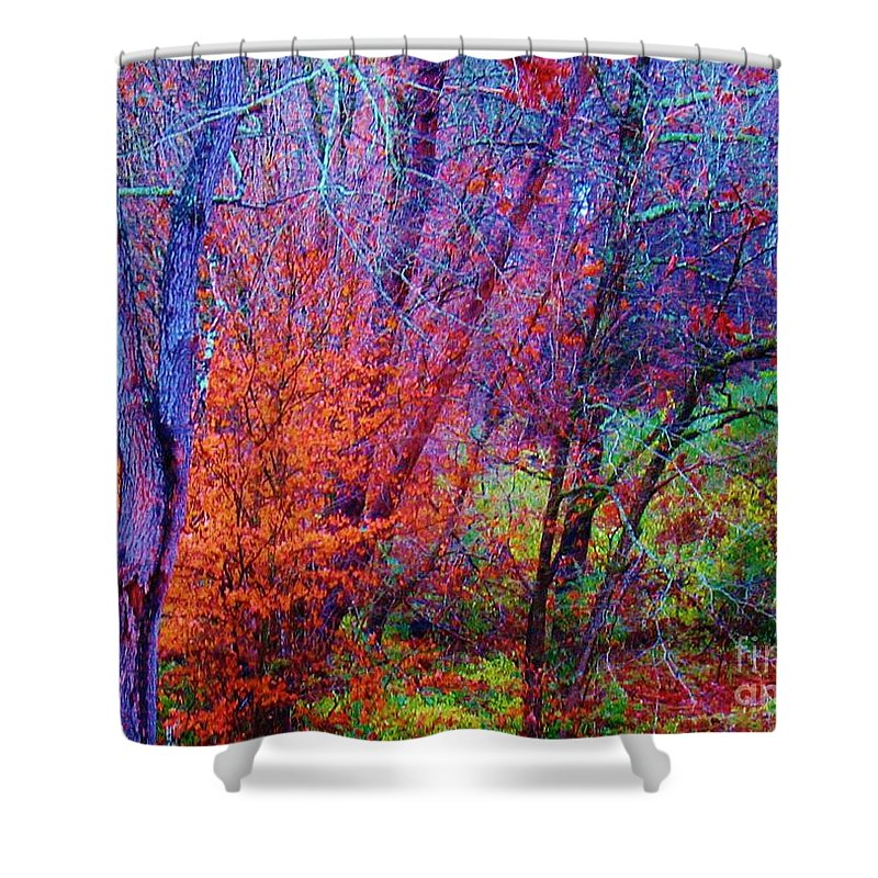 Keri West Shower Curtain featuring the photograph Run Forest Run by Keri West