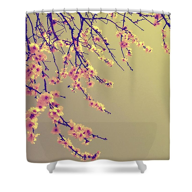 Sakura Shower Curtain featuring the photograph Sakura by Marianna Mills