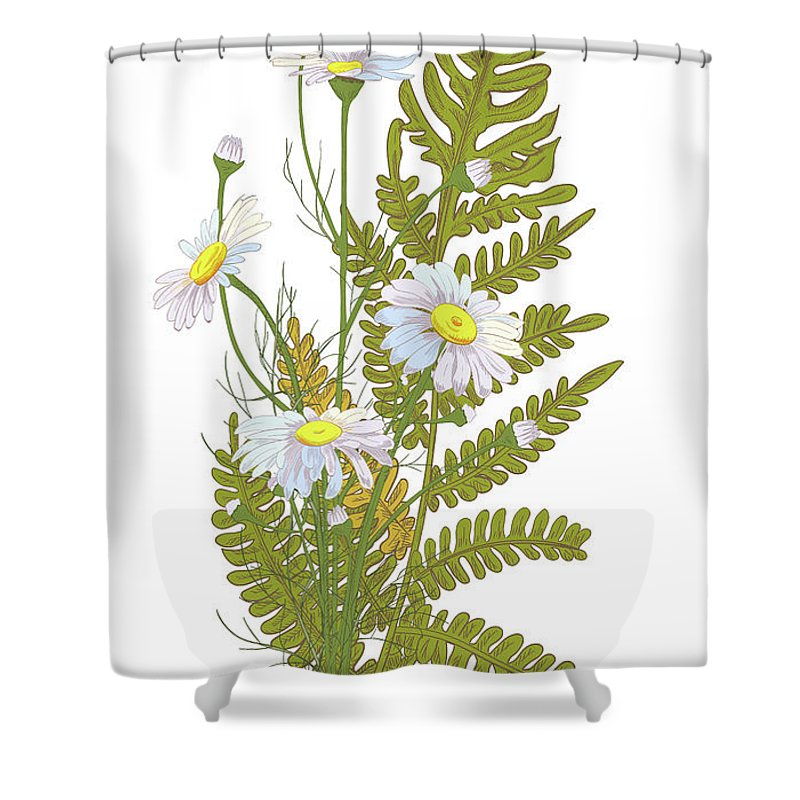 Flowerbed Shower Curtain featuring the digital art Set Of Chamomile Daisy Bouquets White by Olga Ivanova