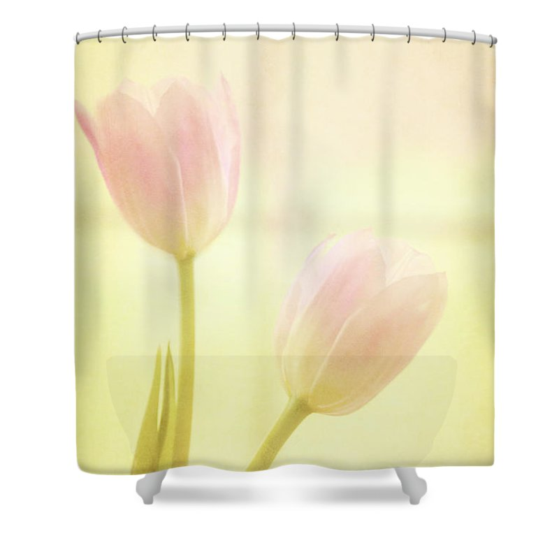 Yellow Shower Curtain featuring the photograph Springtime by Margie Hurwich