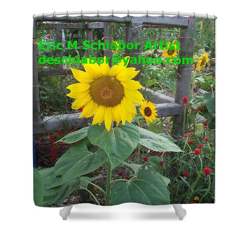 Sunflower Shower Curtain featuring the photograph Sunflower by Eric Schiabor
