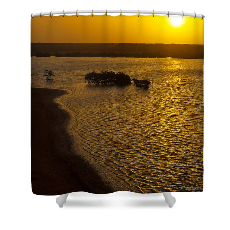 Sun Shower Curtain featuring the photograph Sunrise And Mangrove Trees by Jess Kraft
