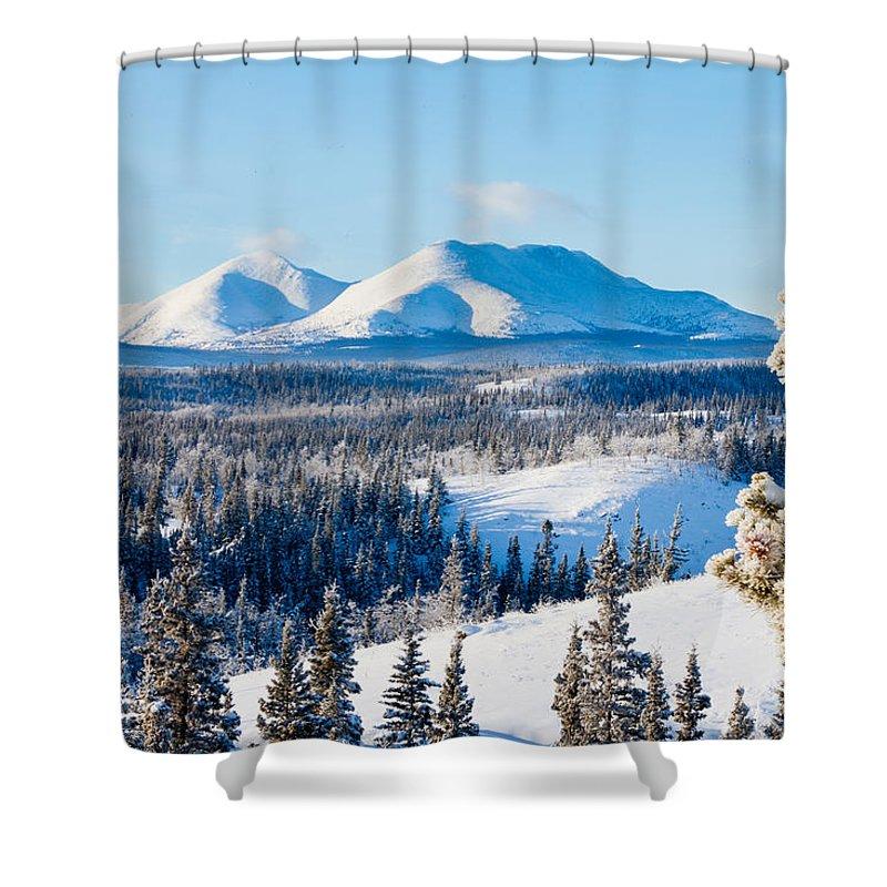 Beautiful Shower Curtain featuring the photograph Taiga Winter Snow Landscape Yukon Territory Canada by Stephan Pietzko