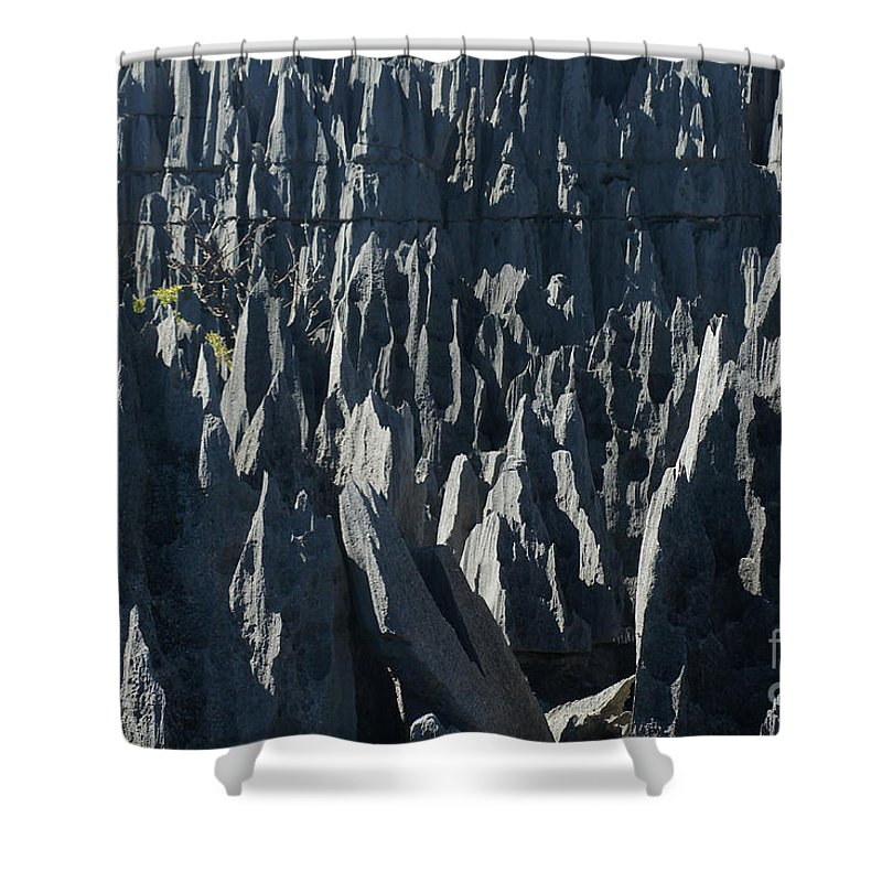 Prott Shower Curtain featuring the photograph Tsingy De Bemaraha Madagascar by Rudi Prott