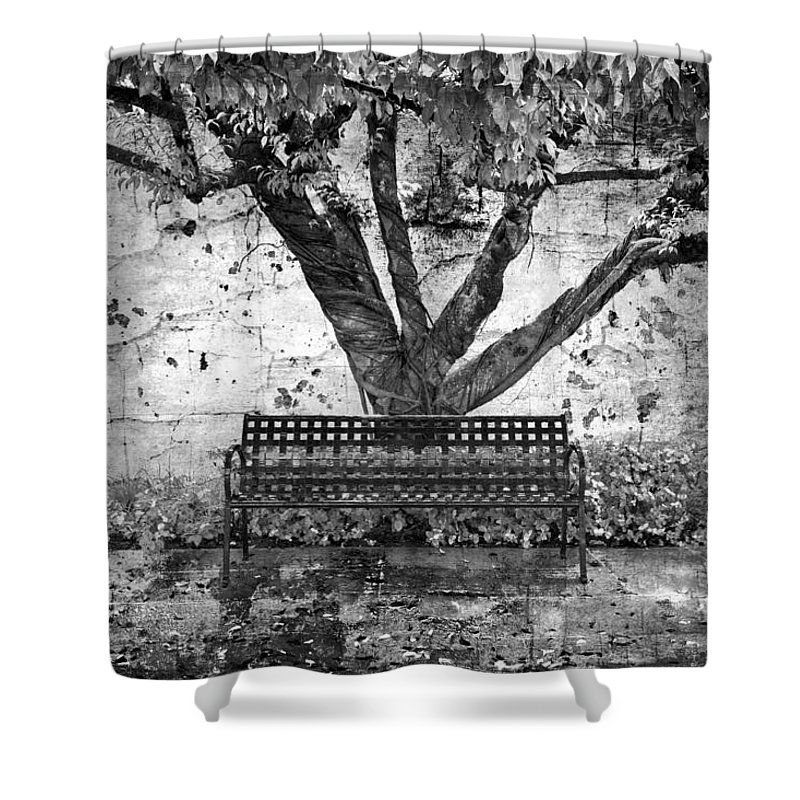 Fall Shower Curtain featuring the photograph Waiting For You by Debra and Dave Vanderlaan