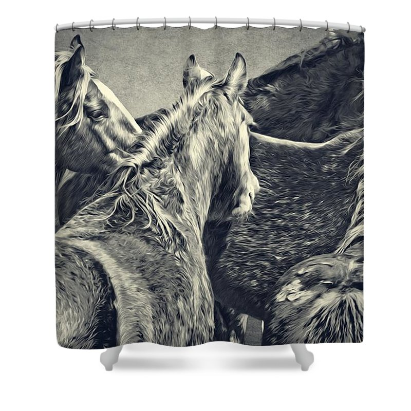 Horses Shower Curtain featuring the photograph Waiting Horses by Alice Gipson