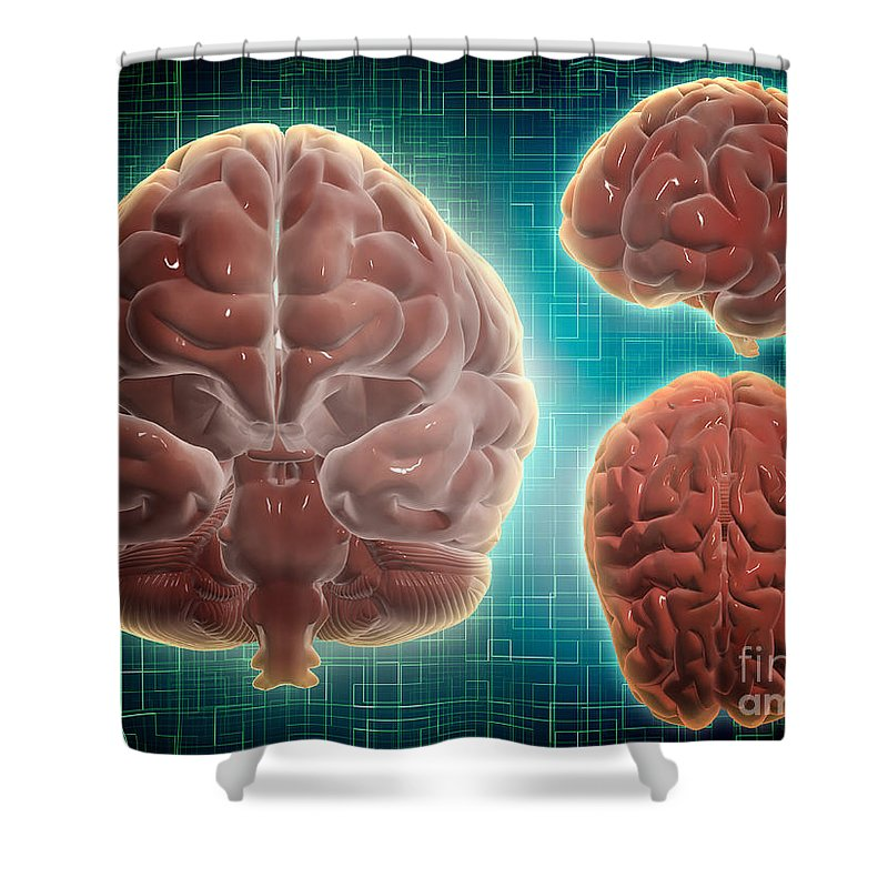 Horizontal Shower Curtain featuring the digital art Conceptual Image Of Human Brain by Stocktrek Images