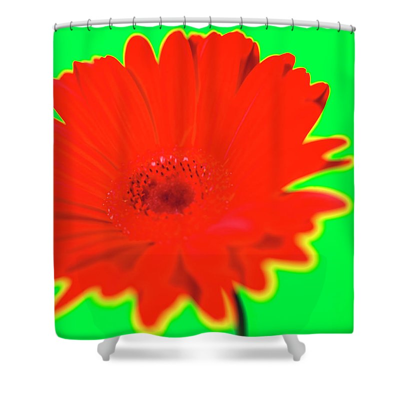 Petal Shower Curtain featuring the photograph Organic by Michael Banks