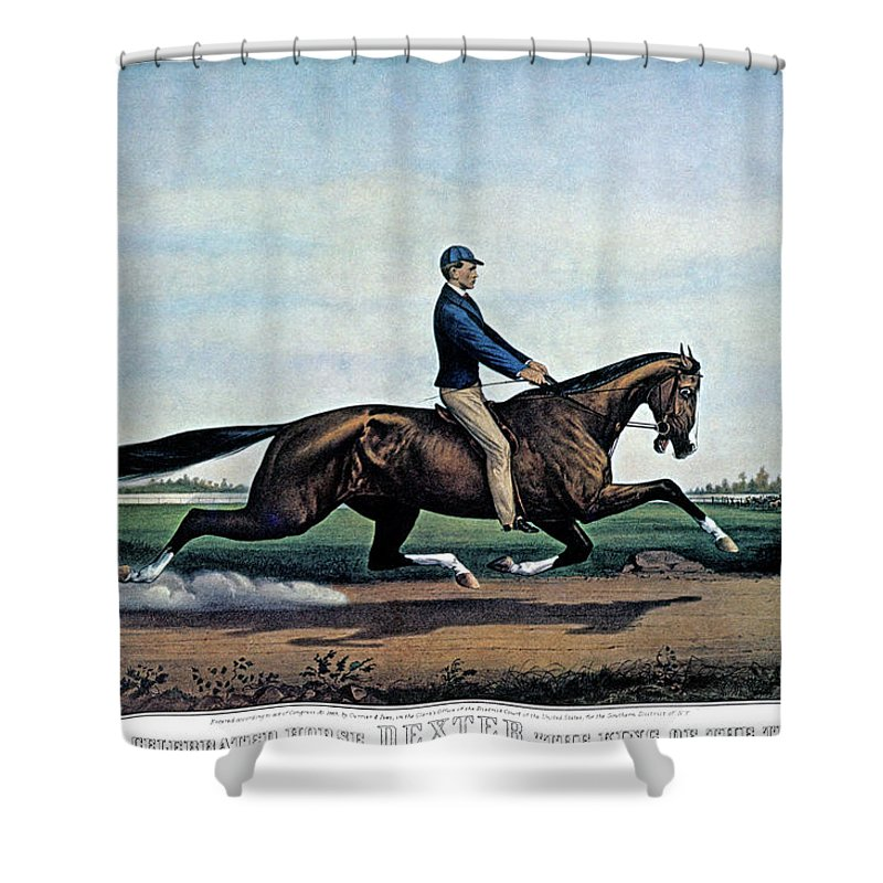 Horizontal Shower Curtain Featuring The Painting 1860s Celebrated Horse Dexter King By Vintage Images