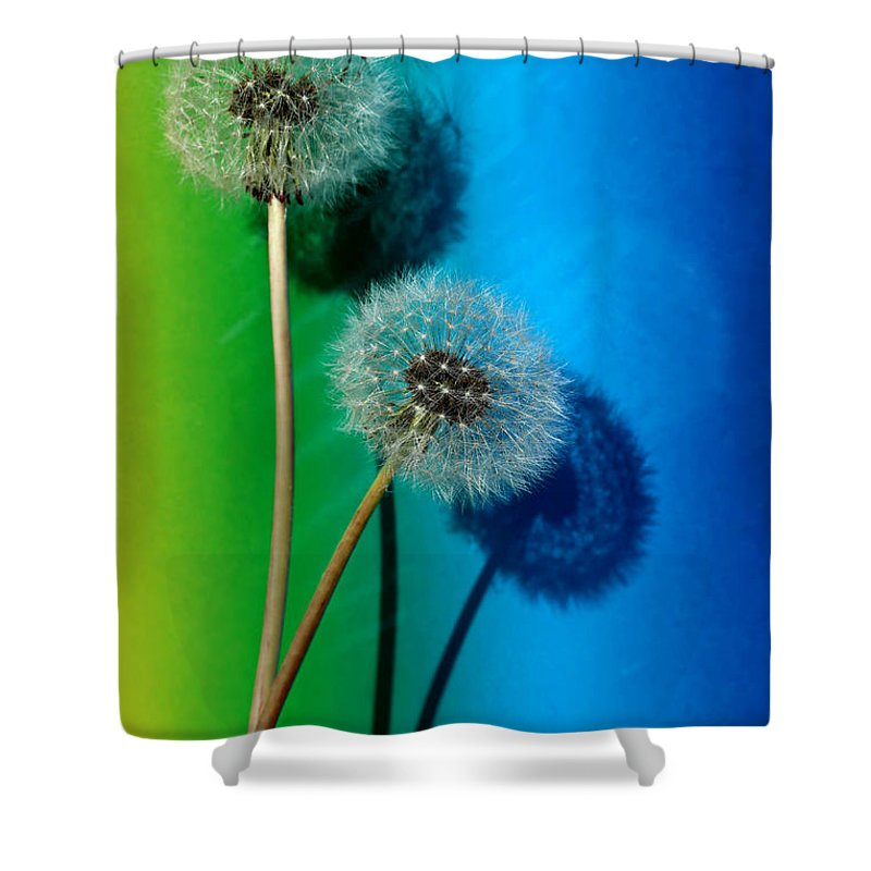 Flower Shower Curtain featuring the photograph Still Life by Heike Hultsch