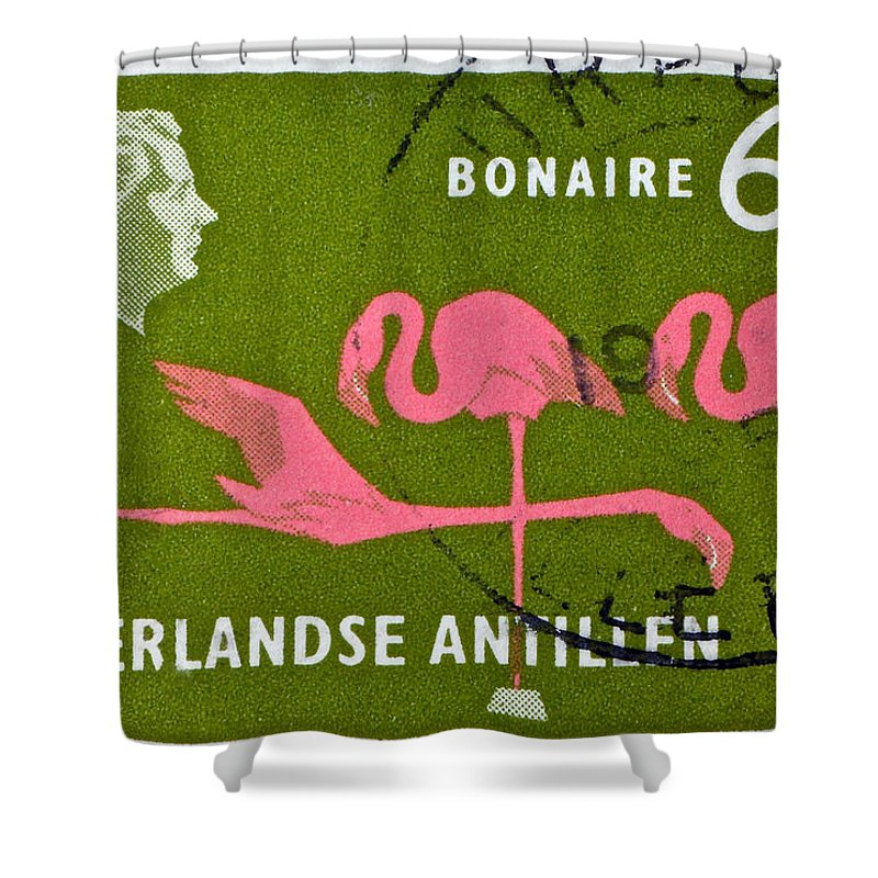 1958 Shower Curtain featuring the photograph 1958 Netherlands Antilles Flamingoes Stamp - Curacao Postmark by Bill Owen