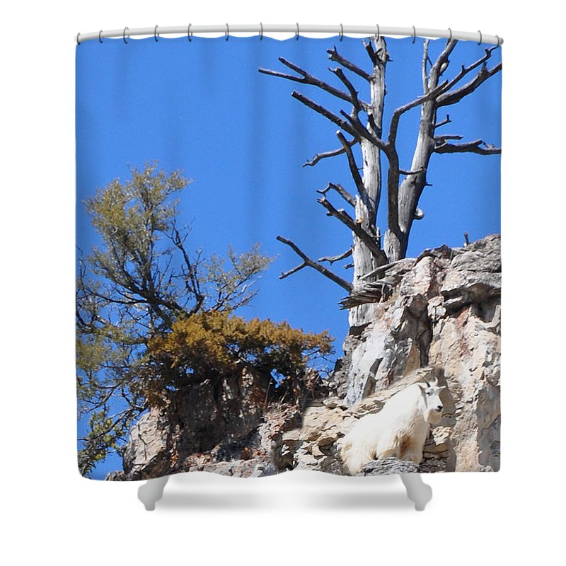 Alpine Shower Curtain featuring the photograph Alpine Wyoming by Image Takers Photography LLC
