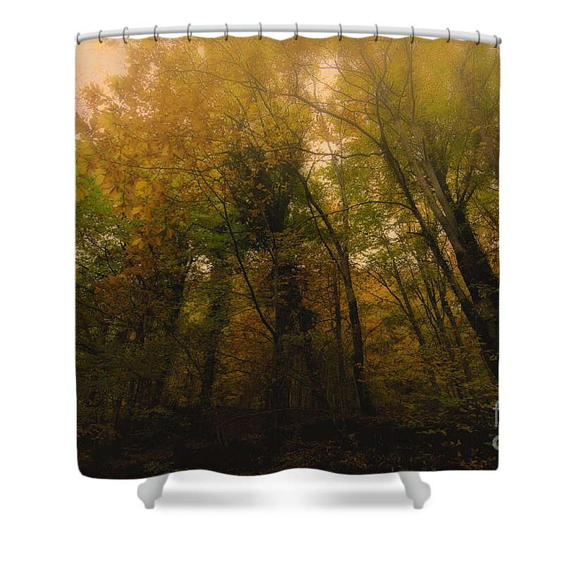 Autumn Shower Curtain featuring the photograph Autumn by Giovanni Chianese