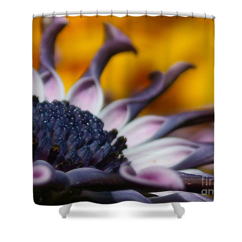 Flower Shower Curtain featuring the photograph Beautiful by Line Gagne