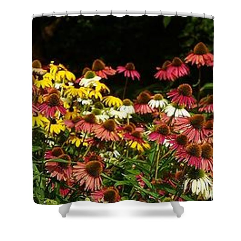Yellow Shower Curtain featuring the photograph Flowers Gone Wild by Lilliana Mendez