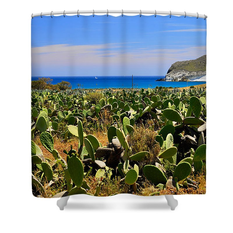 Cactus Shower Curtain featuring the photograph Genoveses Beach by Guido Montanes Castillo