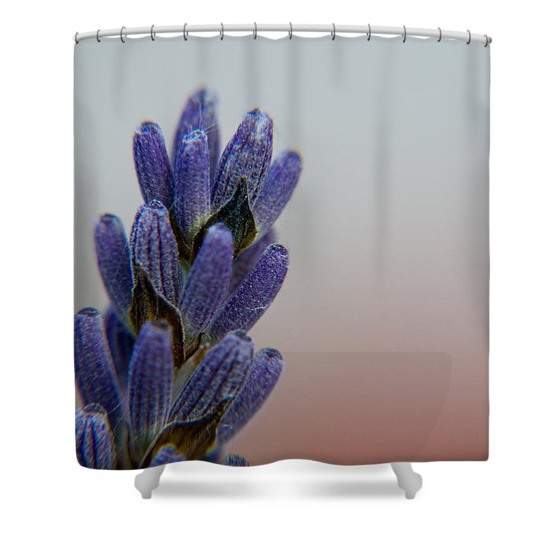 Photography Shower Curtain featuring the photograph Blue by Dave Byrne