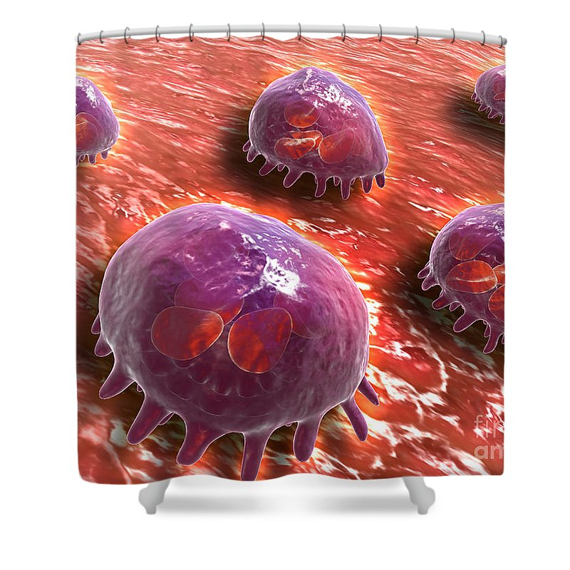 Molecular Biology Shower Curtain featuring the digital art Microscopic View Of Phagocytic by Stocktrek Images