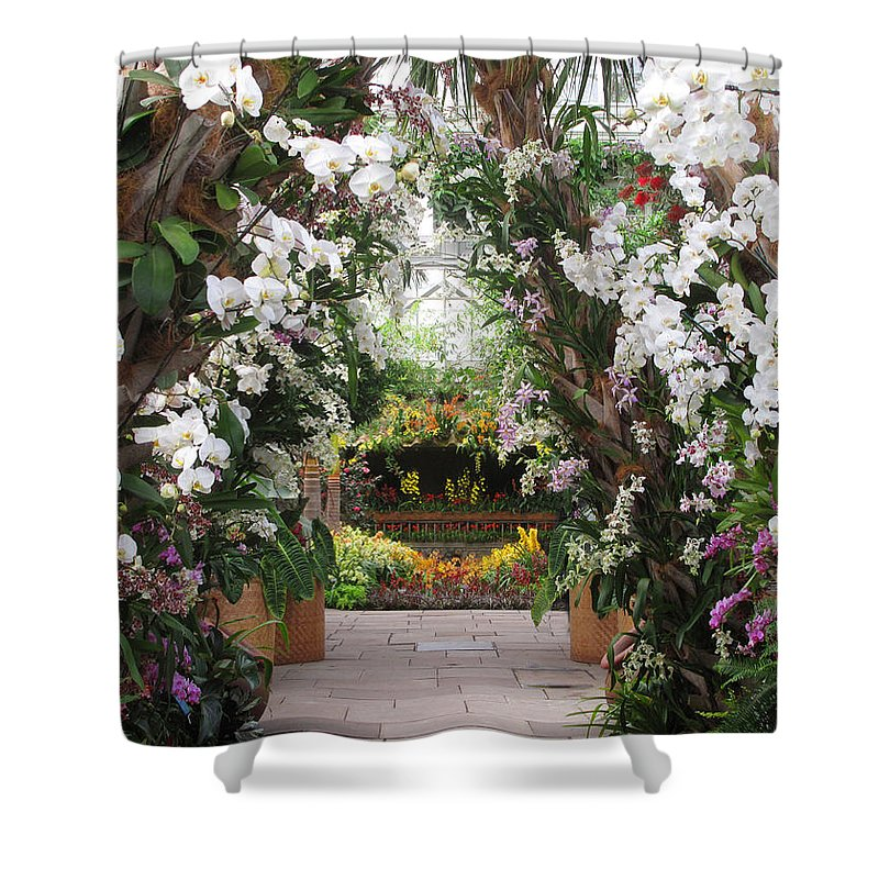 Garden Shower Curtain featuring the photograph Orchid Display by Jessica Jenney