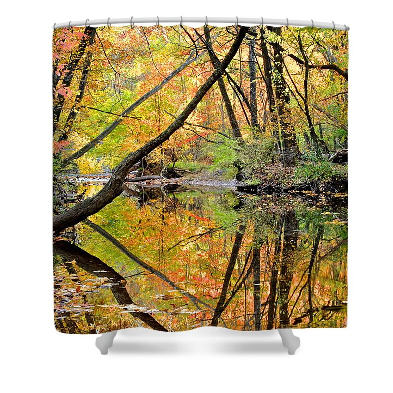 Reflections Shower Curtain featuring the photograph Reflections by Frozen in Time Fine Art Photography