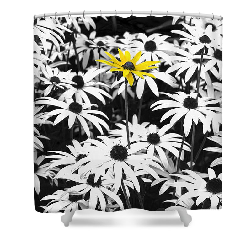 Rudbeckia Shower Curtain featuring the photograph Rise Above by Andy Readman