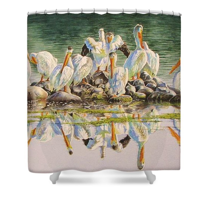 Pelican Shower Curtain featuring the painting Standing Room Only by Greg and Linda Halom
