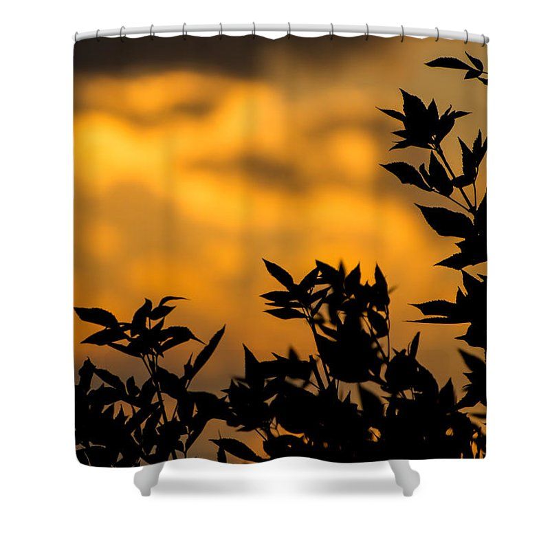 Photo Shower Curtain featuring the photograph Fire In The Sky by Colleen Coccia