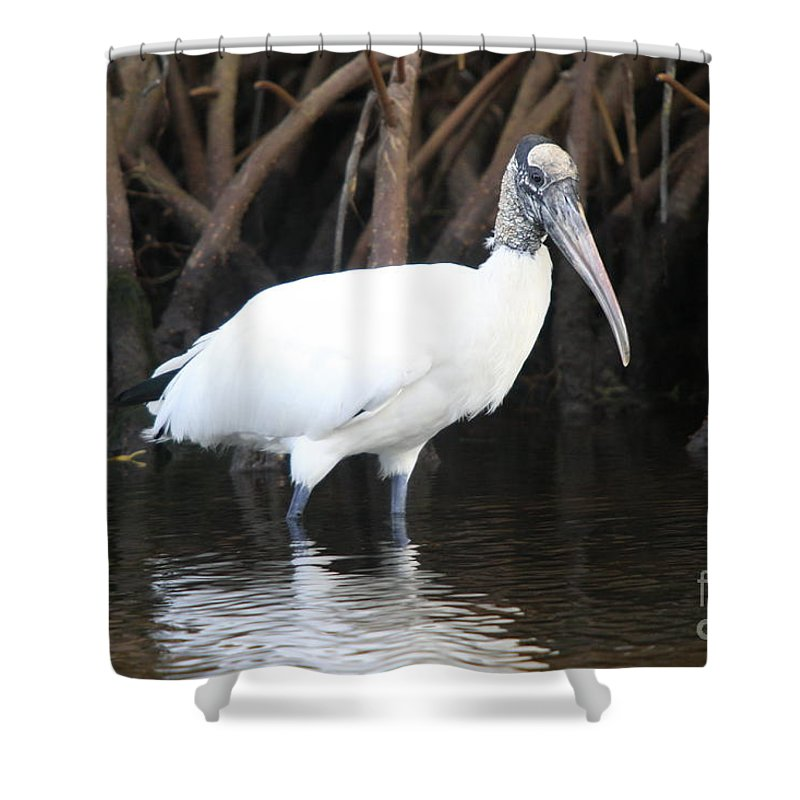 Wood Stork Shower Curtain featuring the photograph Wood Stork In The Swamp by Christiane Schulze Art And Photography