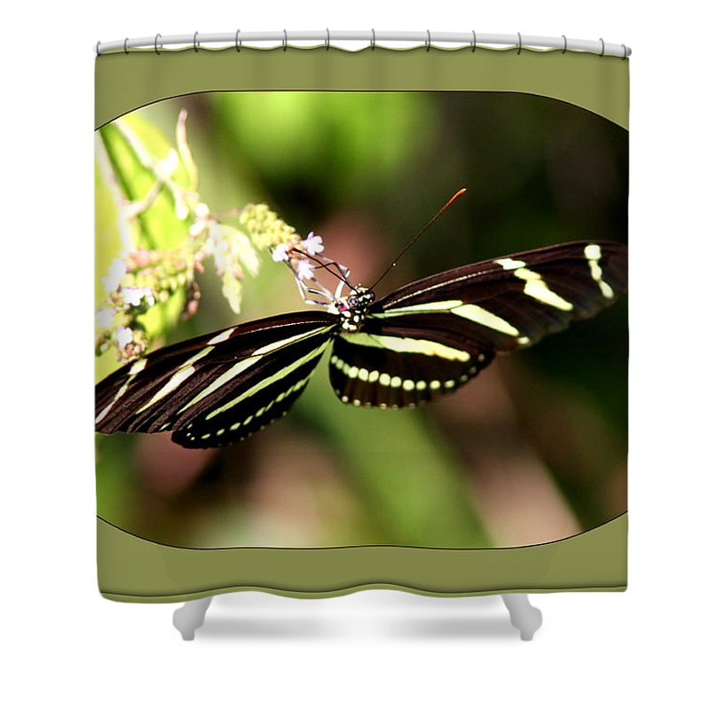 2772-001 Shower Curtain featuring the photograph 2772-001 by Travis Truelove