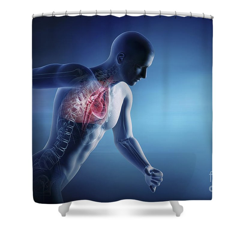 Circulation Shower Curtain featuring the photograph Cardiovascular Exercise by Science Picture Co