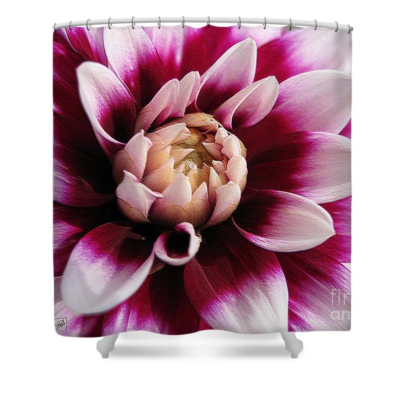 Dahlia Shower Curtain featuring the digital art Dahlia Named Mystery Day by J McCombie