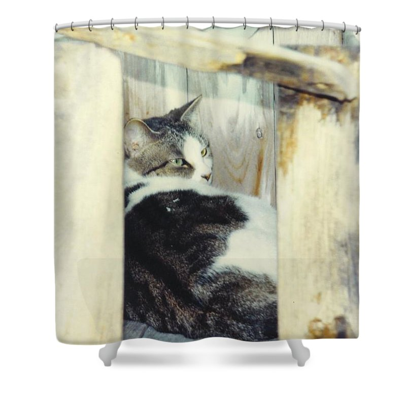 Framed By A Box Shower Curtain featuring the photograph Emmie by Robert Floyd