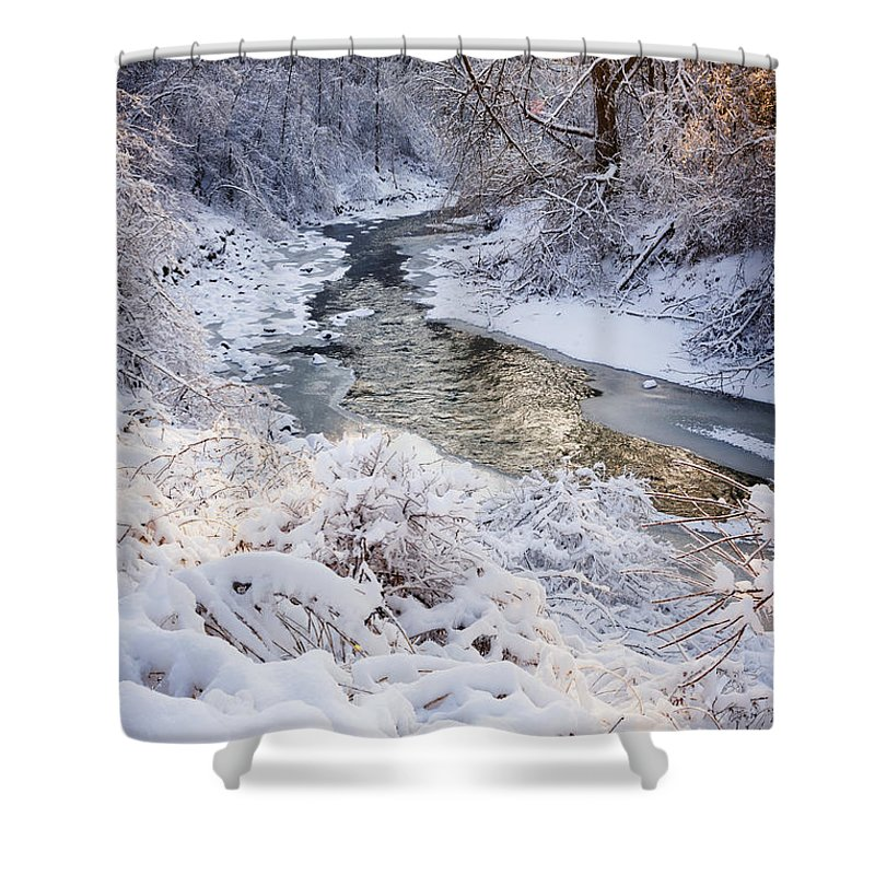 Winter Shower Curtain featuring the photograph Forest Creek After Winter Storm by Elena Elisseeva