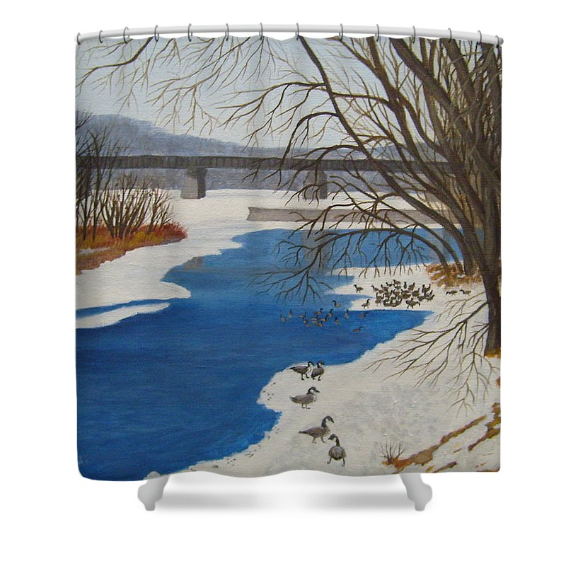 Geese Shower Curtain featuring the painting Geese On The Grand River by Lisa MacDonald