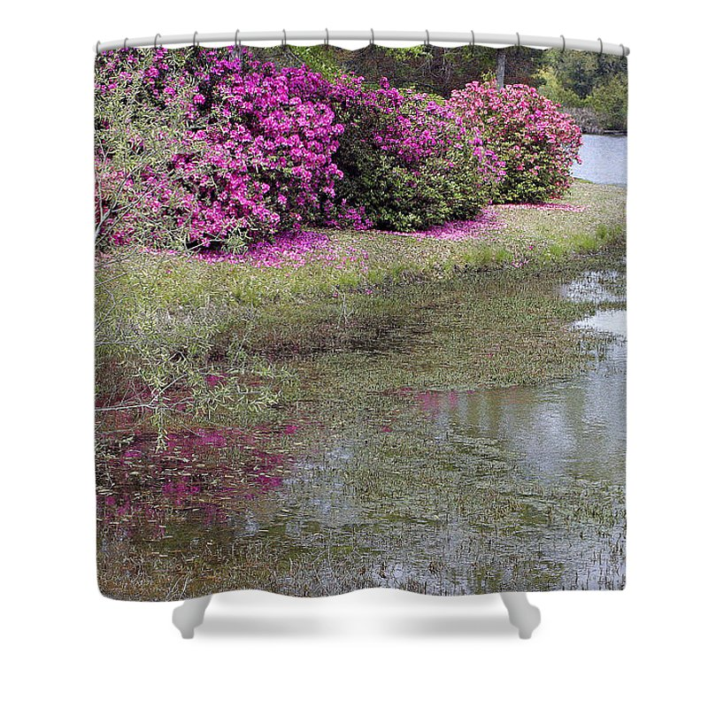 Spring Shower Curtain featuring the photograph Spring In Mississippi by Cora Wandel