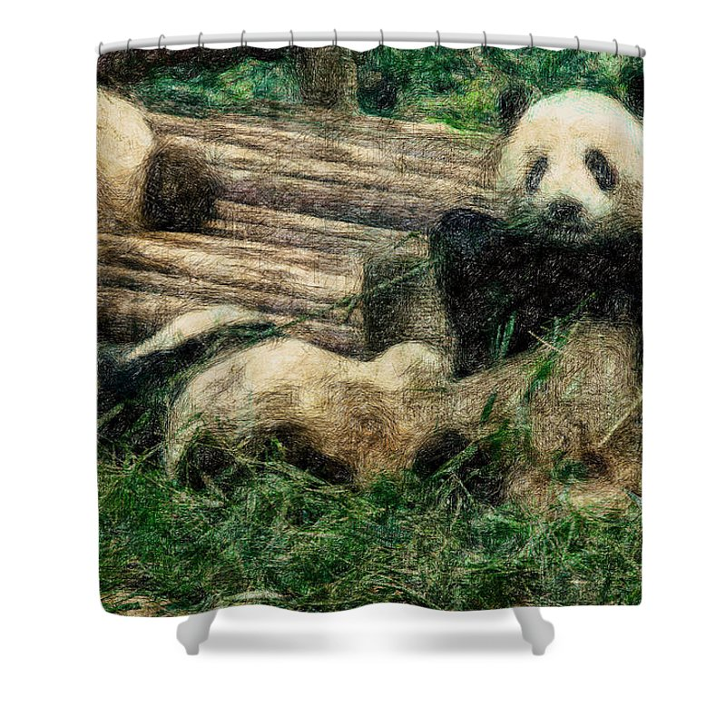 Asia Shower Curtain featuring the digital art 3722-panda - Colored Photo 2 by David Lange