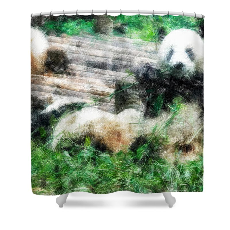 Asia Shower Curtain featuring the digital art 3722-panda - Light Colored Pencils by David Lange