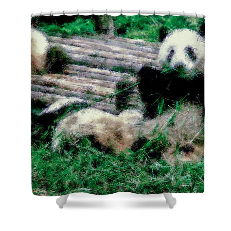 Asia Shower Curtain featuring the digital art 3722-panda - Pastel Chalk 1 by David Lange