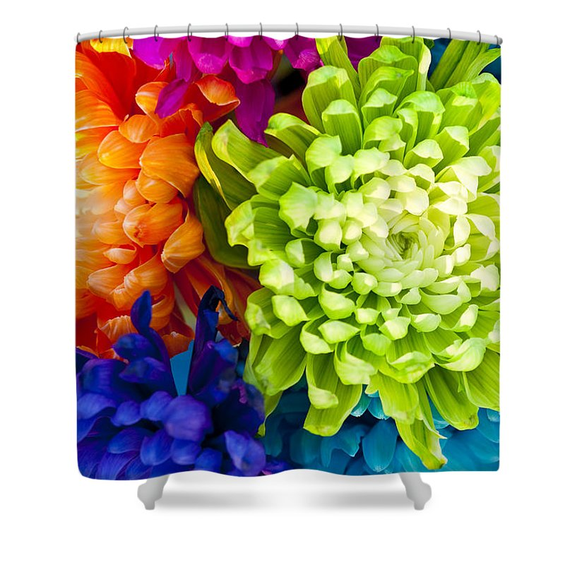 Blossom Shower Curtain featuring the photograph Multicolored Chrysanthemums by Jim Corwin