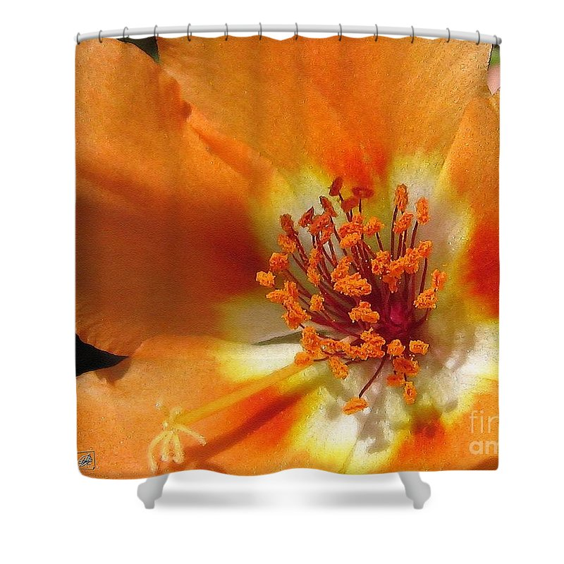 Mccombie Shower Curtain featuring the painting Single Portulaca by J McCombie