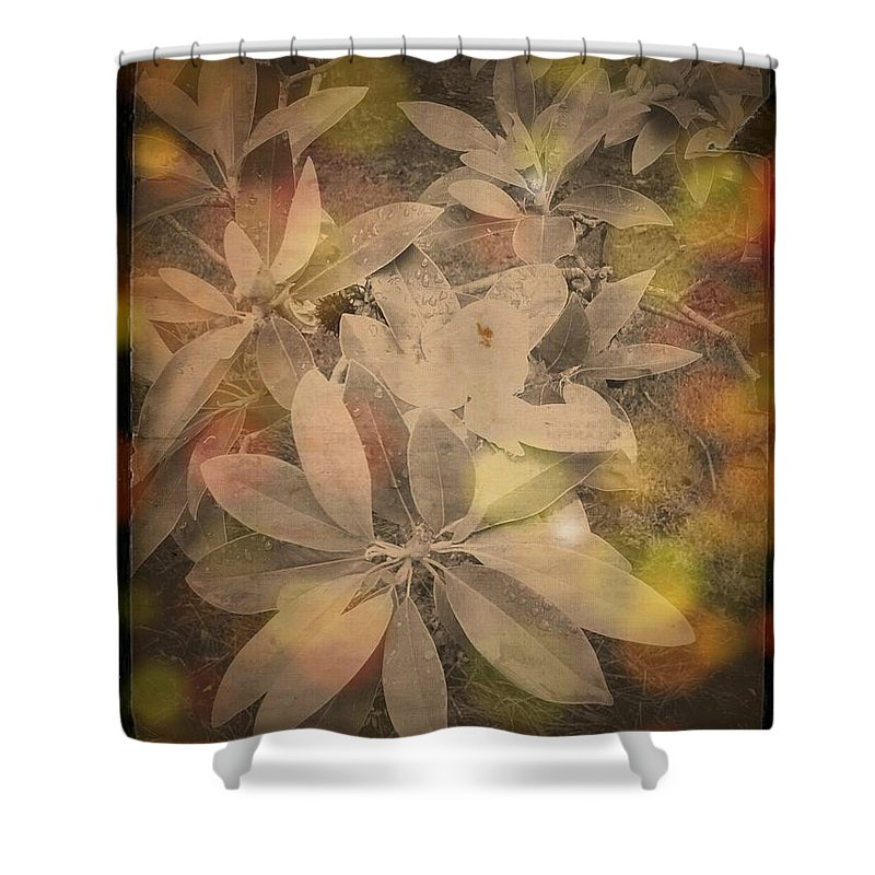 Digital Art Shower Curtain featuring the photograph Untitled by Lady Ex