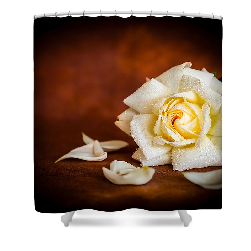 Brown Shower Curtain featuring the photograph White Rose by Mark Llewellyn